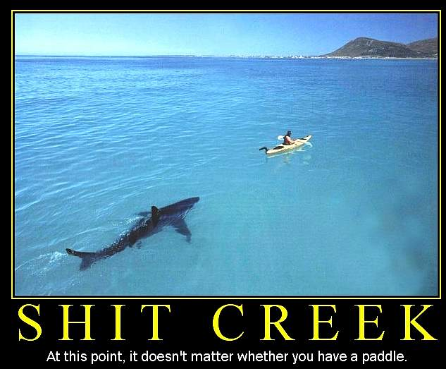In this situation, a paddle in unlikley to be helpful. Sharks are more dangerous than shit!
